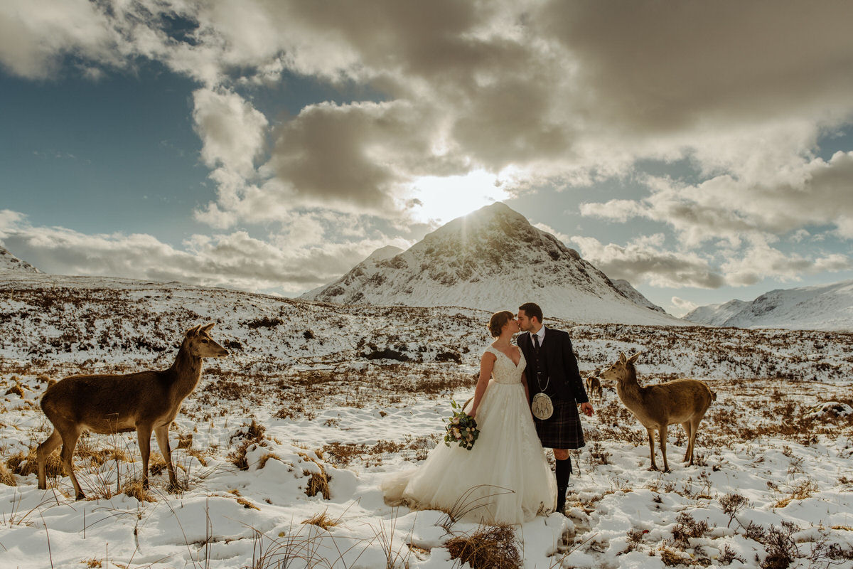 A wedding couple pose with some deer at Glencoe in Scotland