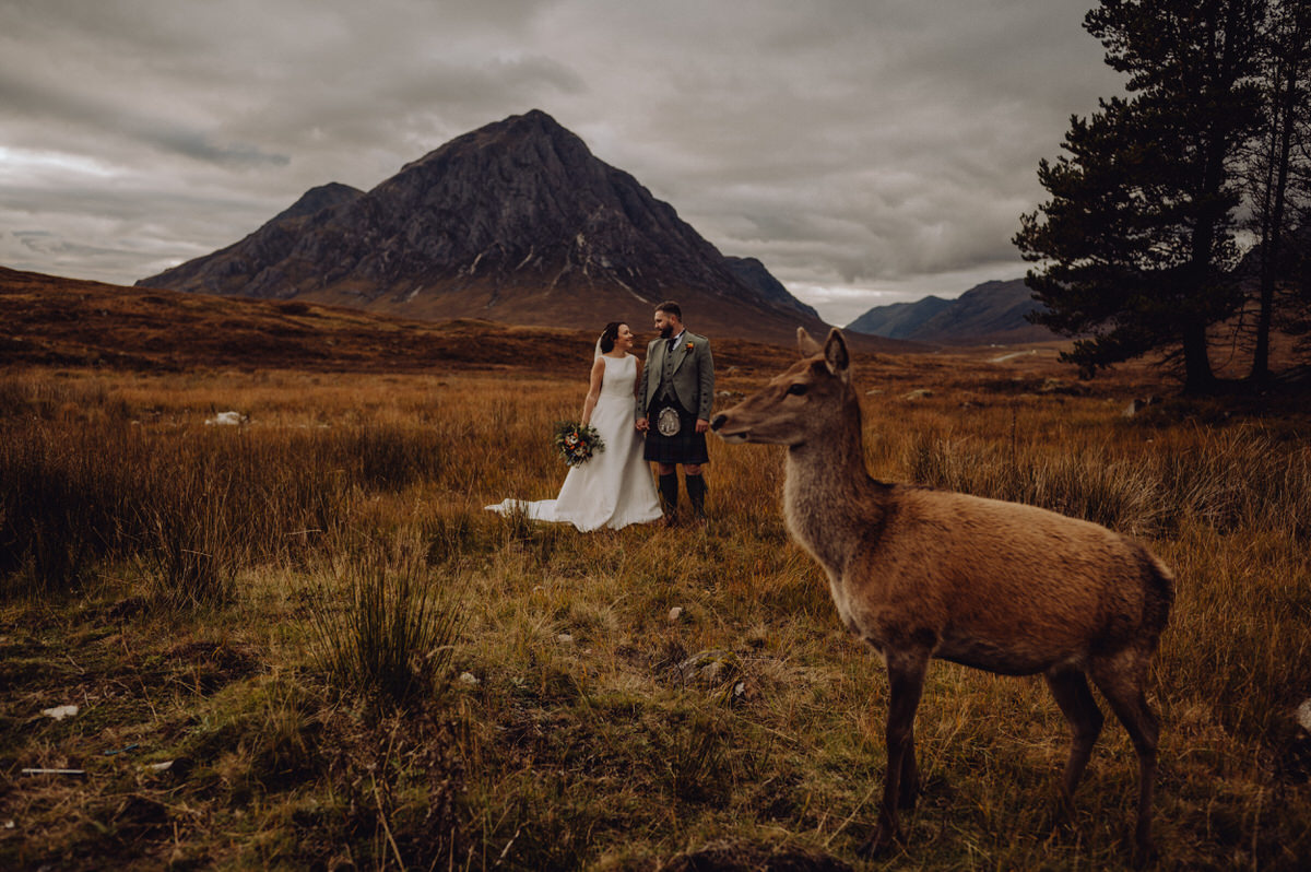 A wedding couple in Glencoe with a deer in the foreground